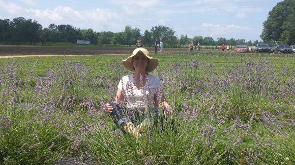 Home | Luvin lavender farms