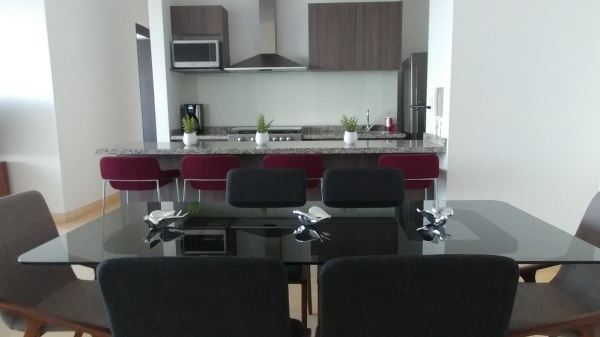 Fully Equiped Kitchen & Vibrant Dining Area @ The Nest