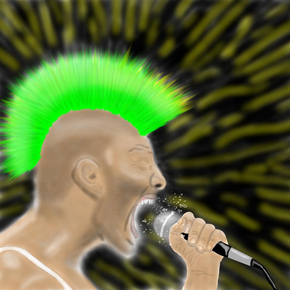 """Punk Fucking Rock"" - A? Hidahl - 2016"
