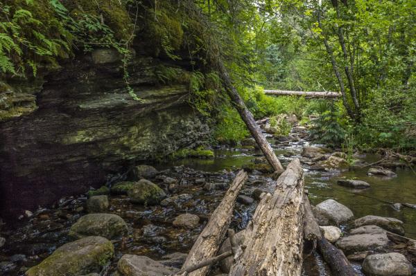 Cave Creek Trail 2.