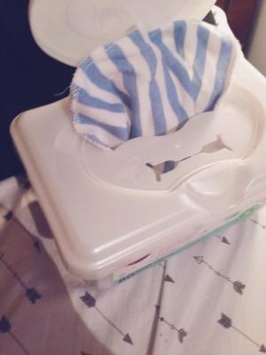 DIY Cloth Wipes & Dryer Sheets