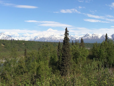 Road to Denali