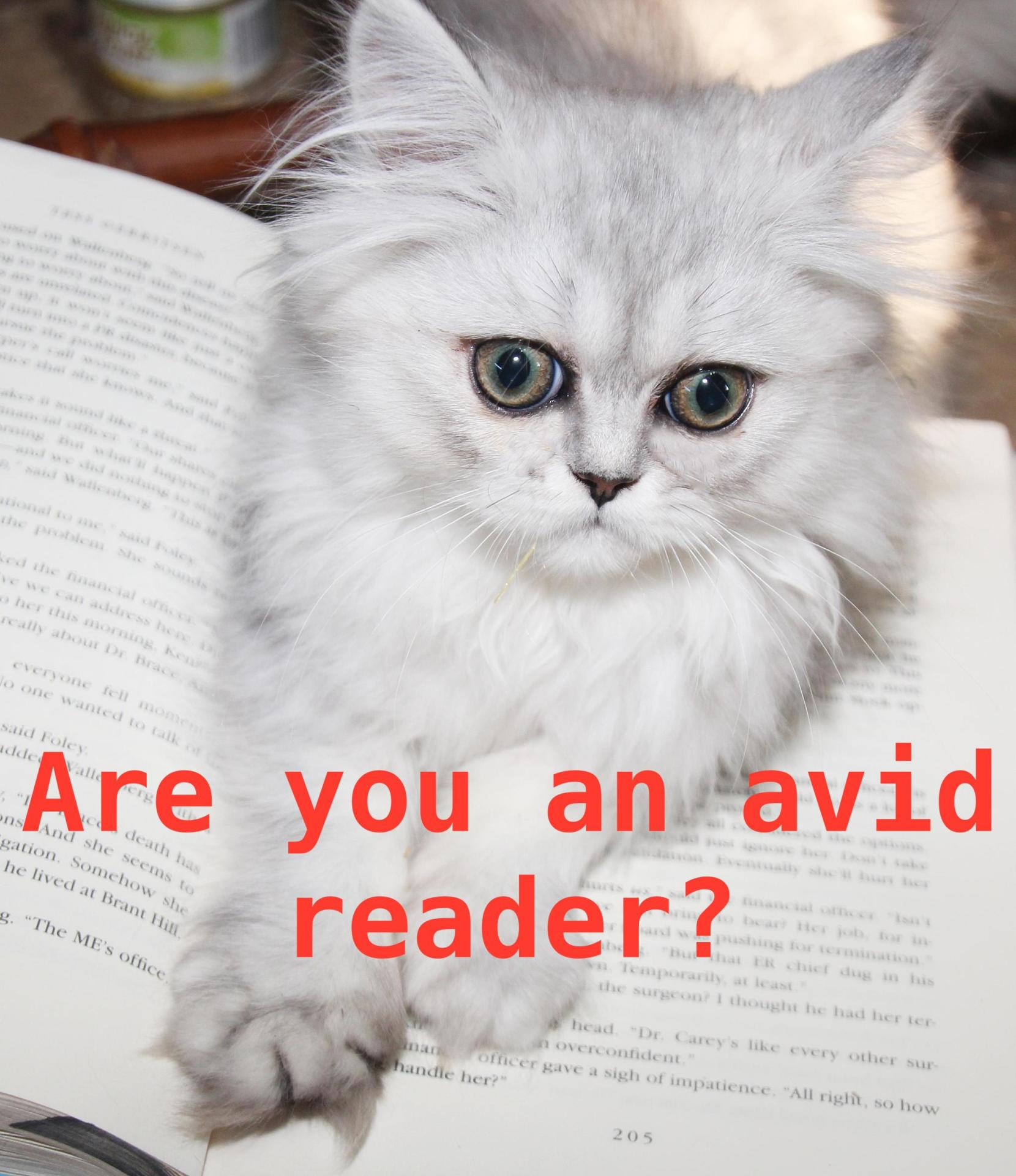 Are You An Avid Reader?