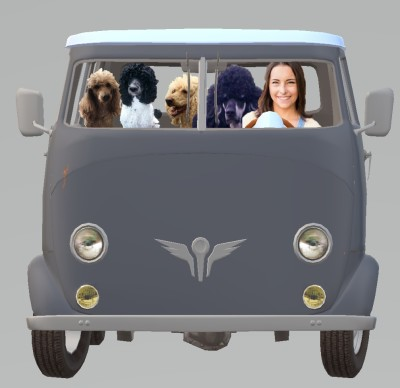 Jenae driving the delivery van with dogs in tow