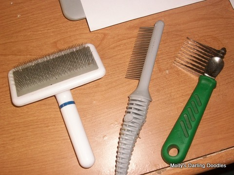 slicker brush, metal tooth comb and dematting comb used for grooming doodles and poodles