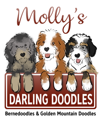 Molly's Darling Doodles Logo