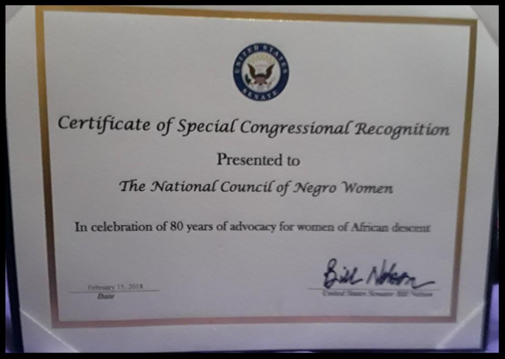 Senator Bob Nelson Special Congressional Recognition Award