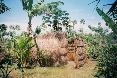 My shower in Markham Valley, Papua New Guinea