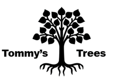 Tommy's Trees