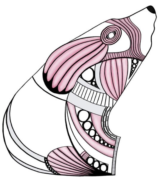 Bear tendons