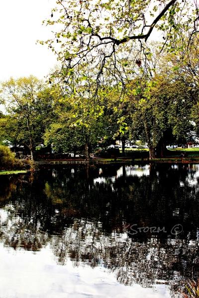 Hyde Park WA