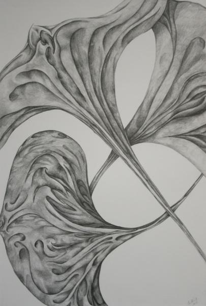 Study for Lotus