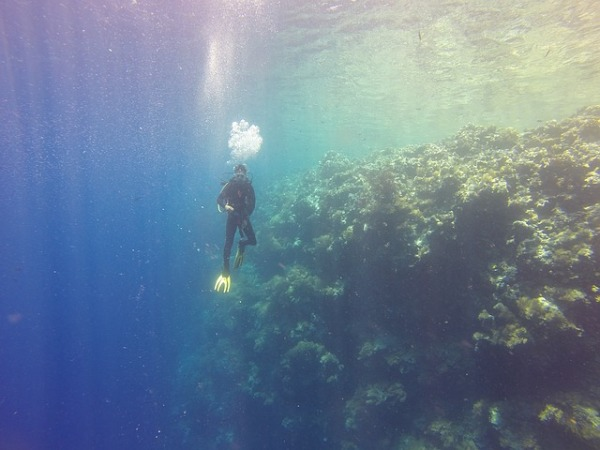 What to Look For In a Scuba Diving Club