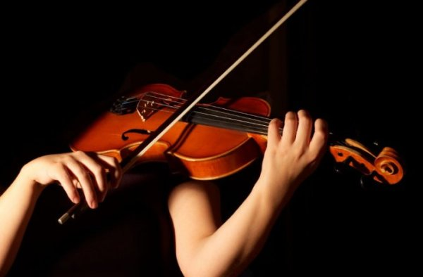 Violin courses for Adults