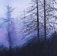 Kathleen Black's Vast shows a forest in fog