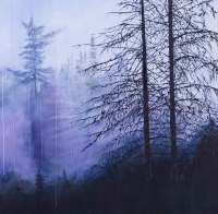 Kathleen Black's Vast shows a forest in fog