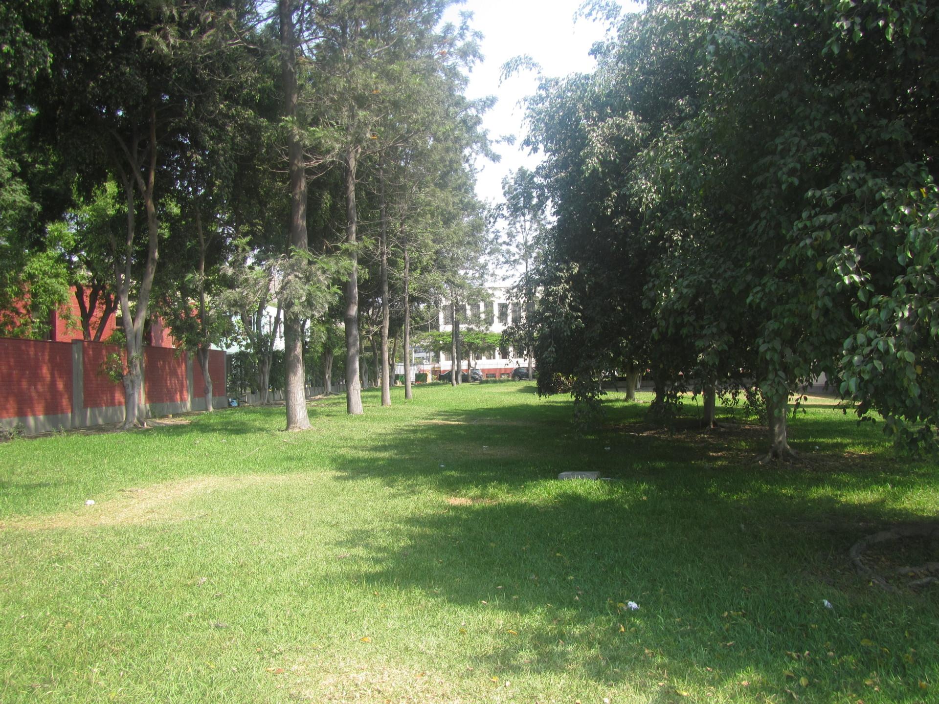 Áreas verdes y Vivero