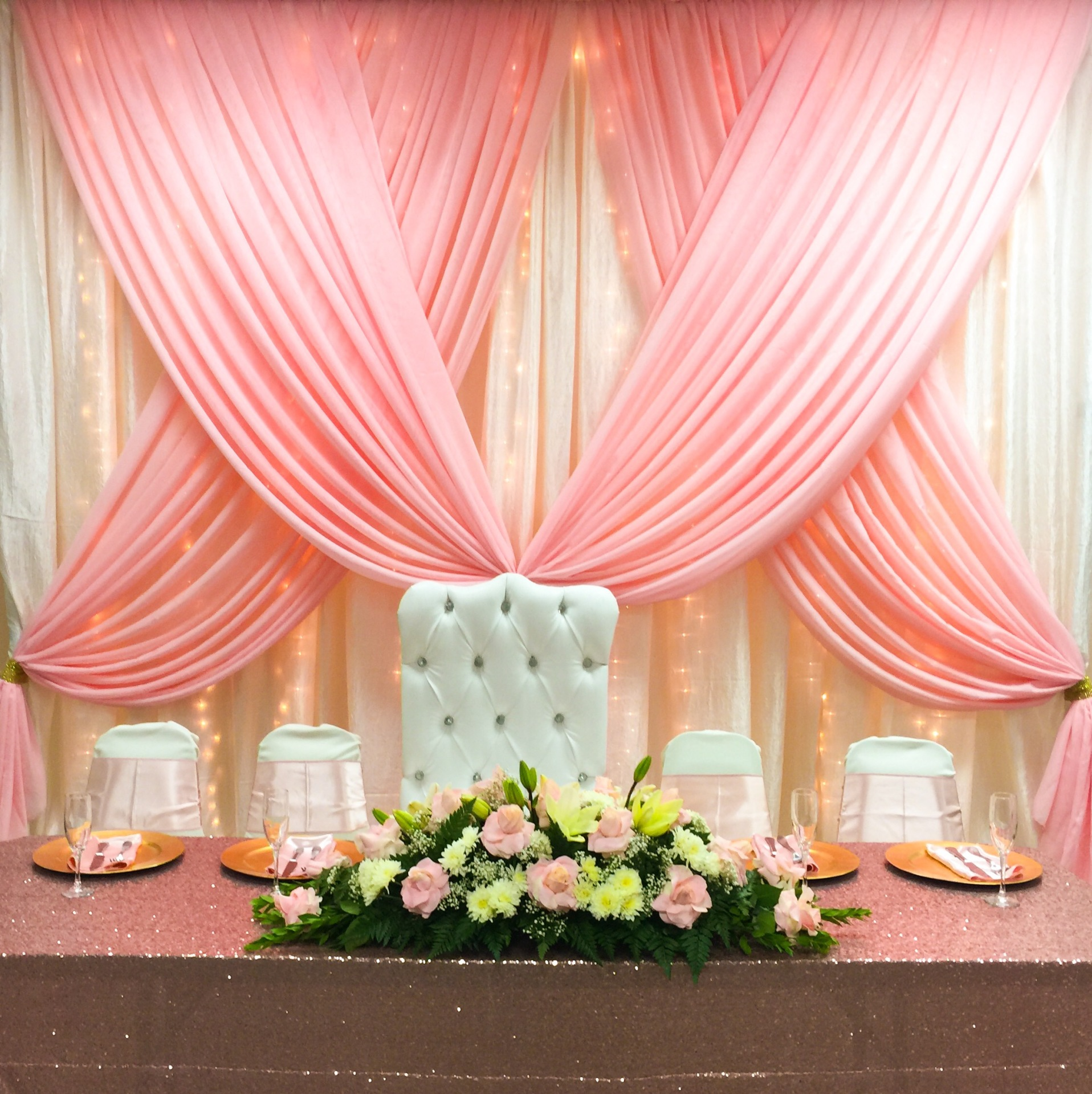 Backdrops- Blush swag