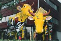 Acrylic painting, outdoor exhibition, life size cows by Michaela Seidl