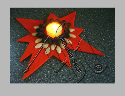 Felt star candle, cones, pumpkin seeds
