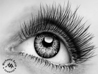 Pencil drawing of an eye by Michaela Seidl