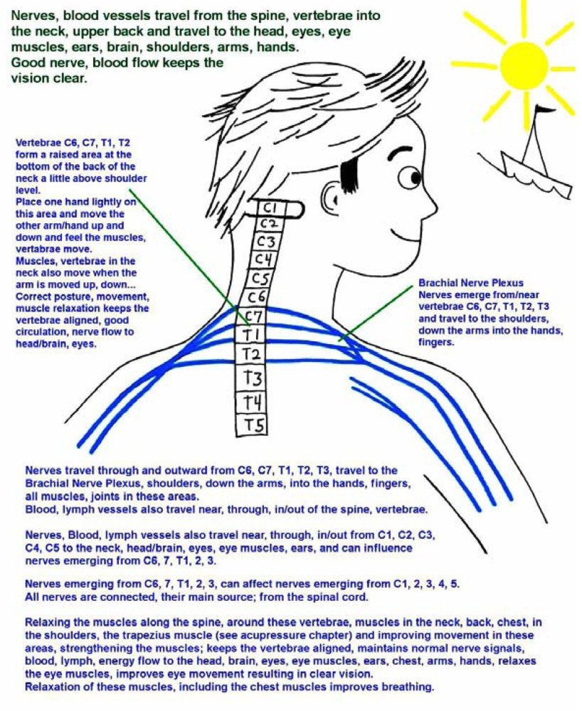 Nerve Pain
