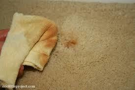Fort Collins Carpet Cleaning