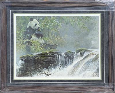 Panda in Jungle  A/P  50/56
