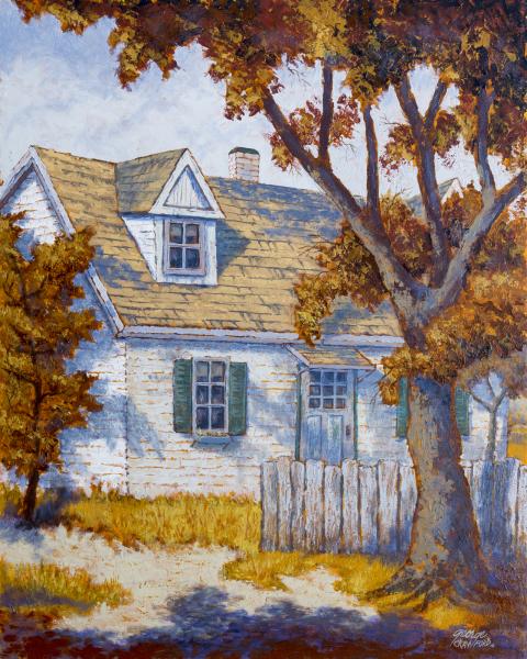 The House on Shady Lane