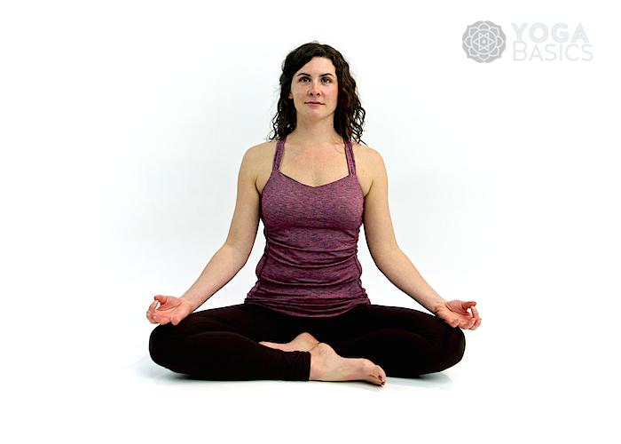 Beginning Yoga Class
