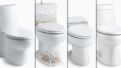 Low-flush toilets: Choosing the right one