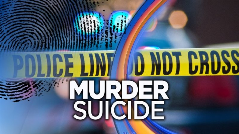 Murder/Suicide reported in Dardanelle