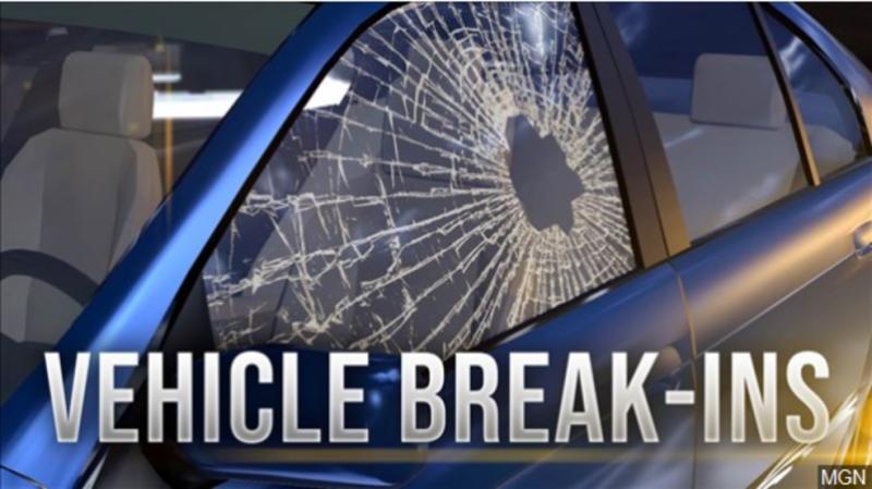 Suspects in custody in vehicle break-ins