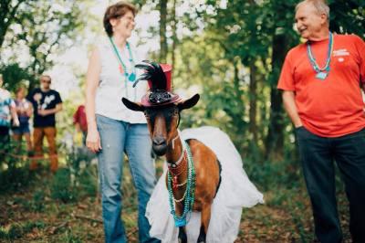 Volunteers needed for Arkansas Goat Festival