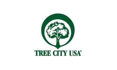 Tree City plants shade tree at Sacred Heart