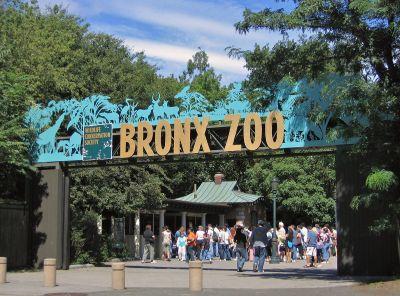Zoo Zest