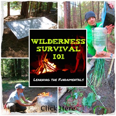 Wilderness Survival 101 April 21, 2018