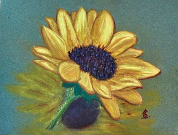 Sunflower Reflection - 14½ x 17½ inches, framed