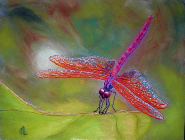 Red-Veined Dragonfly - 15  x 19 inches, framed