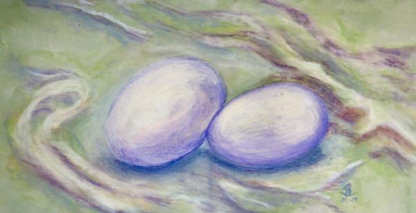Petrified Eggs - 9 x 17 inches, approx, original