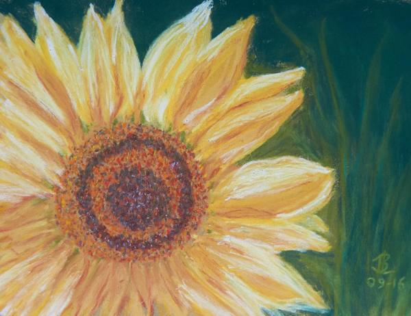 Sun Flower Flash - 10 x 12 inches, approx, original