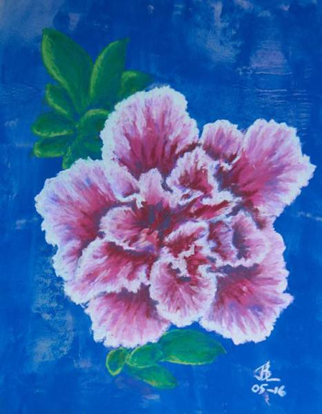 Pink Variegated Camellia - 10 x 12 inches, approx, original