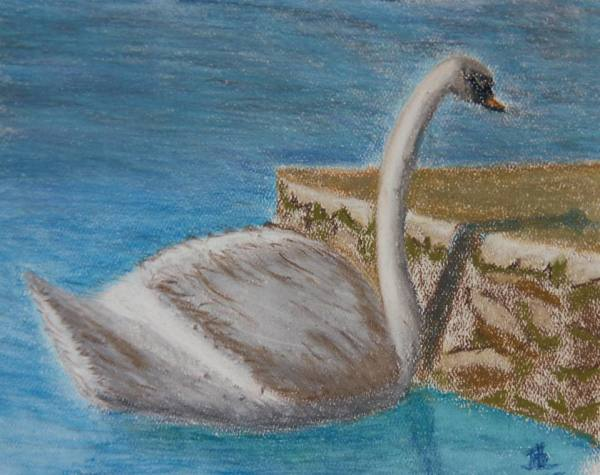 Embankment Swan - 8 x 11 inches, approx, original