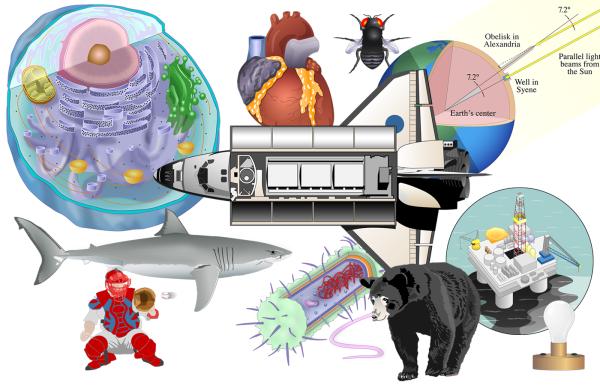 Vector Illustration - Macmillan Learning