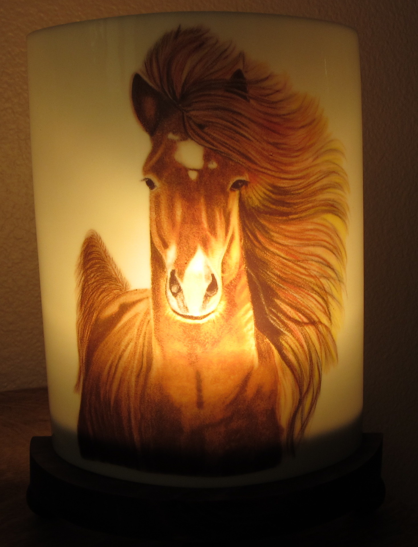 Horse with light on