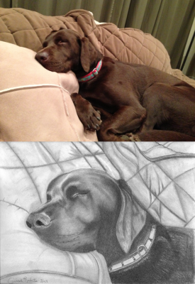 Riley - Pencil