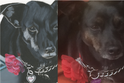 Lacey - Pencil & Oil Pastel