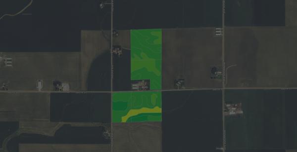 $13,175/ac: 135 acres - Sioux County, Iowa