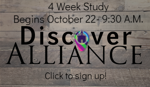 Discover Alliance