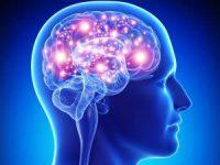 """A Better """"Brain Game"""""""